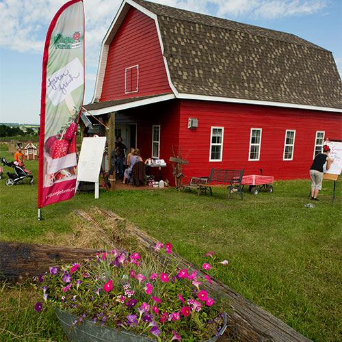 Visit the General Store at The Jungle Farm u-pick strawberries, pumpkins, fall festival in Red Deer, Alberta
