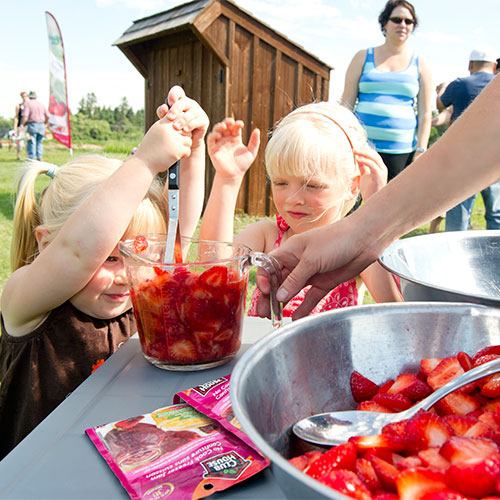 Learn to make your own strawberry jam at The Jungle Farm and General Store in Red Deer, Alberta